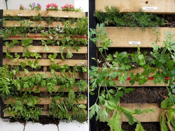 Pallet Vertical Garden 16 Do It Yourself Ideas Wooden