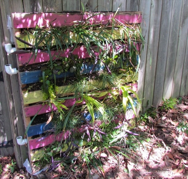 Vertical Pallet Garden Ideas Photograph Pallet Vertical Ga
