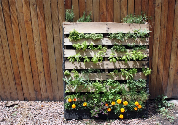 Pallet vertical garden 16 do it yourself ideas wooden for How to make a vertical garden using pallets