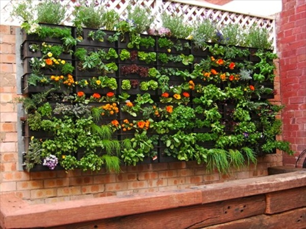 Pallet vertical garden 16 do it yourself ideas wooden for Vertical pallet garden