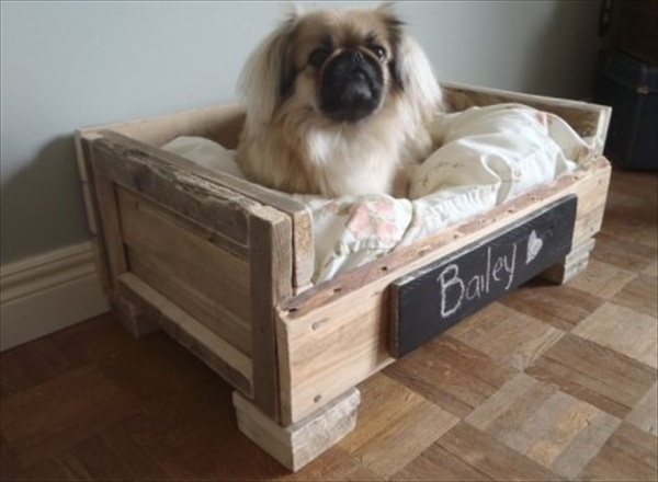Amazing diy pallet furniture ideas awesome diy pallet furniture plans - Pallet Dog Bed Fun Filled Use Of Pallet Woods Wooden