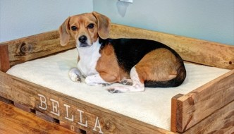 Pallet Dog Bed: Fun Filled Use of Pallet Woods