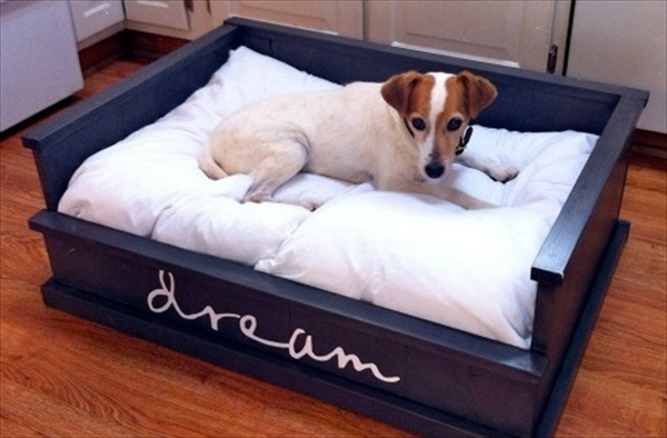 beautiful pallet dog bed
