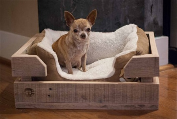 pallet dog bed for sleeping