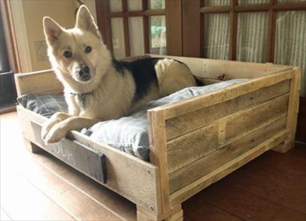 pallet dog bed diy