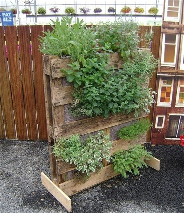 garden styling with pallet vertical planter wooden pallet furniture. Black Bedroom Furniture Sets. Home Design Ideas