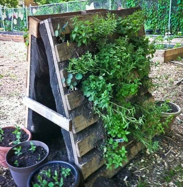 pallet vertical planter