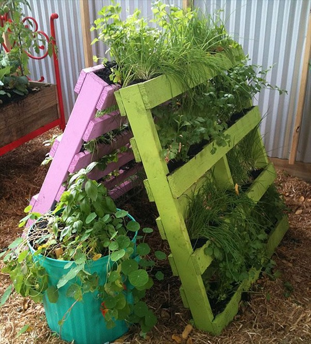 Garden Styling with Pallet Vertical Planter | Wooden Pallet Furniture