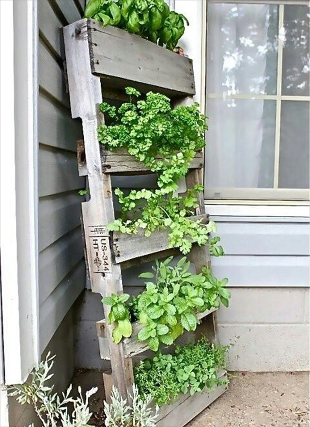 Garden styling with pallet vertical planter wooden for Vertical pallet garden