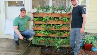 Pallet Vertical Garden – 16 Do It Yourself Ideas