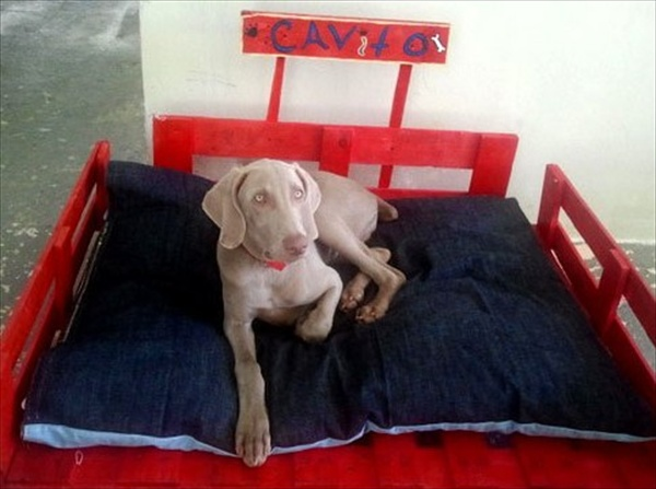 pallet dog bed in red color