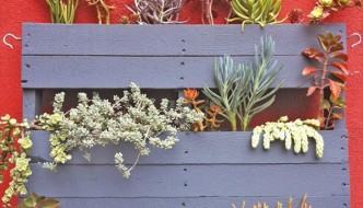 5 DIY Pallet Garden Projects